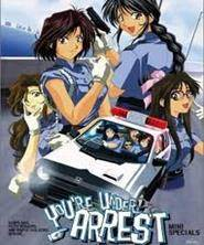 Watch You`re Under Arrest Mini Special Anime Full Episode Highlights Online